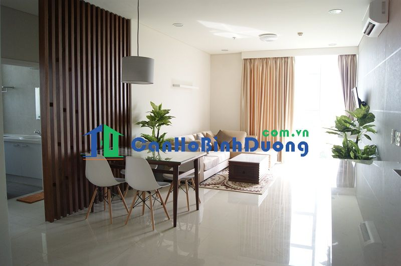 apartment in binh duong new city