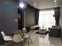 Habitat Binh Duong apartment for rent fully furnished, good price, 62 m2 2 bedrooms, 2 wc high floor view SG