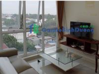 Sunrise Becamex apartment for rent in Thu Dau Mot, 2 bedrooms, comfortable